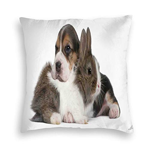 Fundas de almohada decorativas de lino de algodón, fundas de cojín cuadradas para mascotas, conejo y cachorro, Reino de animales, amistad, mejor compañeros, conejo, cama, 45 x 45 cm