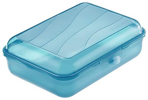 Rotho Fun Vesperdose 1,25l mit Klickverschluss, Kunststoff (PP) BPA-frei, blau, 1,25l (19,5 x 14,5 x 6,5 cm)