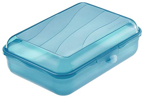 Rotho Funbox Vesperdose 1.25 L, Kunststoff (BPA-frei), blau, 1.25 Liter (19,5 x 14,5 x 6,5 cm)