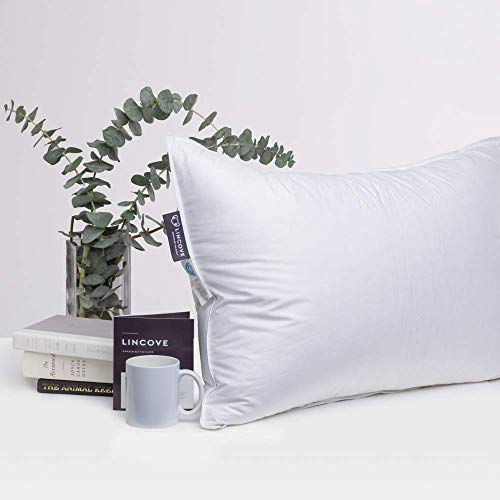 Lincove Hotel Collection Pillows for Sleeping - Premium Down...