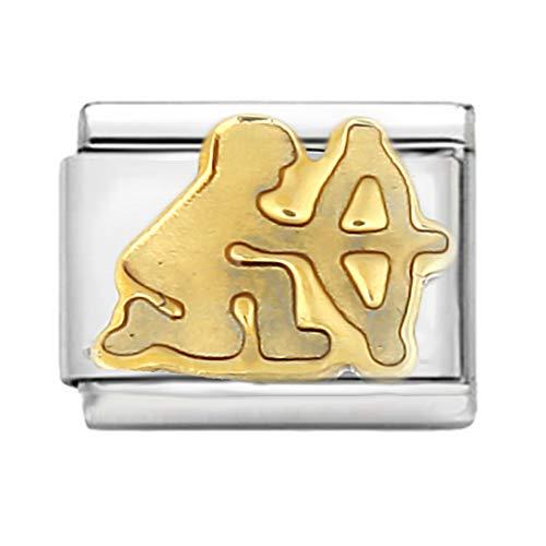 AKKi jewelry Italian Charms Armband Classic glieder Italy Charm,Silber Gold Edelstahl Links Kult modele Blume Tiere Herz für Schütze