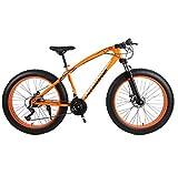 NANXCYR Bicicletas de montaña Bicicletas Fat Bike, 26 Pulgadas Acero de Alto Carbono Bicicleta Todoterreno Playa Snow Bike 4.0 Neumático Ancho Doble Freno de Disco Hombres Mujeres,A,21speed