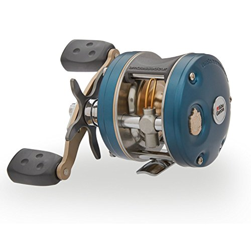 Top 10 Best Rugged Fishing Reel Comparison