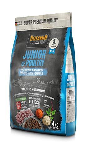 Belcando Junior GF Poultry [4 kg] getreidefreies Hundefutter | Trockenfutter ohne Getreide für Junge Hunde | Alleinfuttermittel für Hunde ab 4 Monaten