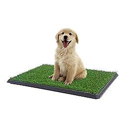 Hundekot - Braucht Ihr Welpe eine? Wird Ihr Hund einen benutzen?