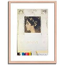 グスタフ・クリムト Gustav Klimt「「ジュニアス」の寓意のためのスケッチ Fair drawing for the Allegory Junius 1896. 」 インテリア アート 絵画 プリント 額装作品 フレーム:木製(白木) サイズ:L (412mm X 527mm)