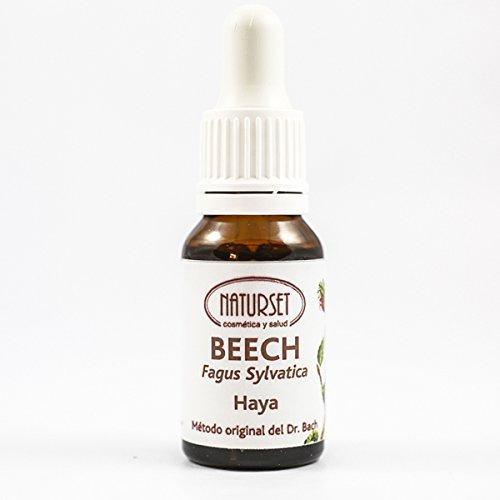 Beech-Haya 15ml