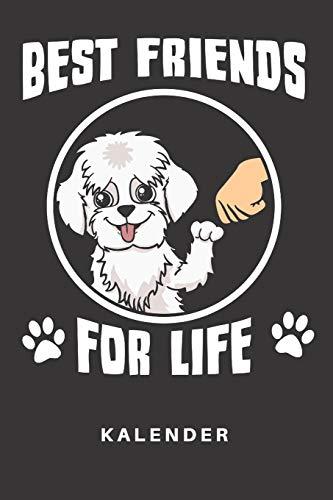 Kalender: Kalender | Notizkalender | Schreibkalender | Jahreskalender | Tageskalender | DIN A5 | Hund | Hunde | Hunderasse | Hundezüchter | Malteser | ... Freundschaft | Parter | Liebe | Best Friends