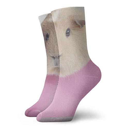 Kevin-Shop Holländisches Schwein in einem kleinen Topf Kompressionsstrümpfe Fun Casual Crew Socken, dünne Socken Kurzer Knöchel für Outdoor, Athletic Moisture Wicking