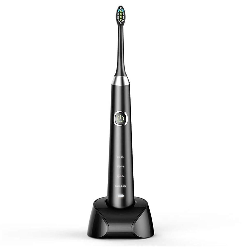 アグネスグレイから話す電動歯ブラシ USBの充満基盤のホールダーの柔らかい毛のきれいな歯ブラシが付いている大人の黒い防水電動歯ブラシ (色 : ブラック, サイズ : Free size)