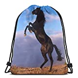 Yuanmeiju Cool Horse (32) 3D Print Drawstring Backpack Rucksack Shoulder Bags Bolsa de Gimnasio For Adult 16.9'X14'