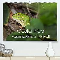 Costa Rica. Faszinierende Tierwelt (Premium, hochwertiger DIN A2 Wandkalender 2022, Kunstdruck in Hochglanz): Eindrucksvolle Aufnahmen von der einzigartigen Tierwelt Costa Ricas (Monatskalender, 14 Seiten )