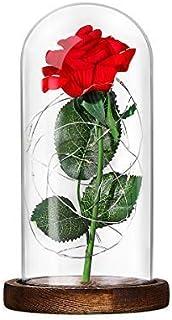 Lámpara de Mesa LED Rosa de Seda Roja y Luz con Pétalos Caídos en Cúpula de Cristal Sobre Base de Dia de la madre Madera Valentín