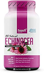 Echinacea - Strongest DNA Verified - Healthy Immune System, Physical & Mental Health, Potent Strength for Winter Conditions - Natural Pain Reliever, Anxiety, Depression, Fight Infections - Vegan Safe