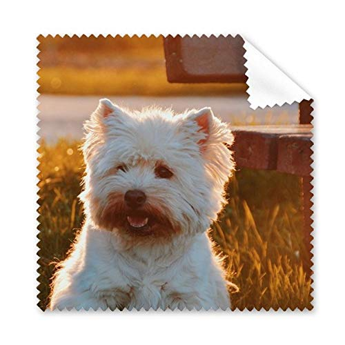 hond wit dier eenzame nacht bril doek schoonmaken doek telefoon scherm reiniger 5 stks gift
