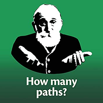 How Many Paths?