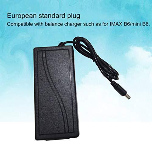 Swiftswan Netzteil ac/dc 12 v 5a 60 watt für rc Modell Spielzeug Batterie Balance ladegerät für imax b6 für imax b6 Mini