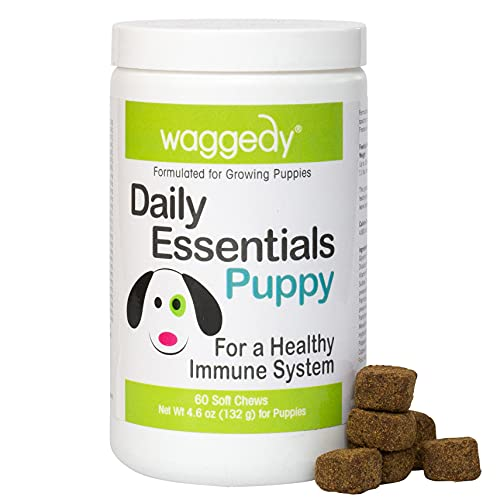 waggedy Puppy Vitamin Chews –60 Chewy Multivitamins, Full Spectrum Functional Treats, Large or Small Breed Puppy Supplement: Joint, Digestion, Immune System, Eyes & Coat 4.6 oz. USA, Time Released
