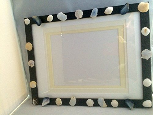 Sea Shell Frame for 6 x 8 Photo in Black Wood Frame Made From Cape Cod Shells
