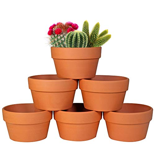 6-Pack: Large 6'' Terracotta Shallow Planters with Drainage Hole