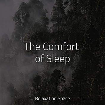 The Comfort of Sleep