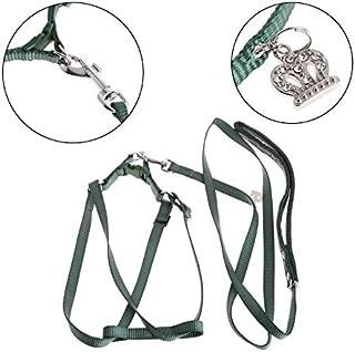 D-4PET Bird Harness - Parrot Bird Leash Outdoor Adjustable Harness Training Rope Anti Bite Flying Band