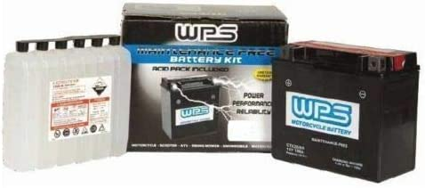 Now free shipping RPM WPS Maintenance-Free Sealed AGM CTX16CL-B-BS Battery Luxury