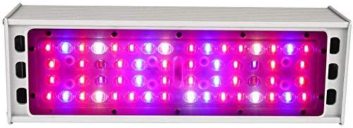 TENDERNESS Plant-Light Full Spectrum Plant Growth Lampe 150W 300W LED wachsen Licht Full Spectrum Pflanzenwachstum Licht für Indoor Blumen Hydroponics Vegs Gewächshaus Gewächszelt-150W,150w