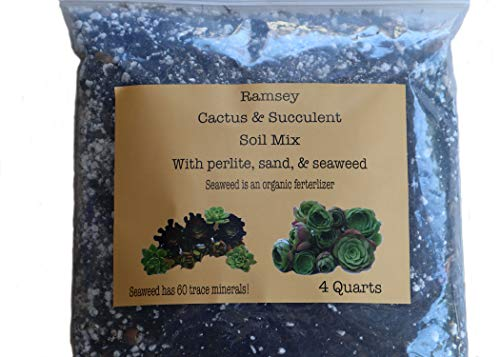Organic Succulent and Cactus Soil Mix by Ramsey Succulent Soil