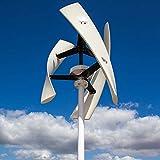 TQ Aerogenerador de Eje Vertical Tipo X Viento Generador de energía Blanca 400w 24v con regulador de MPPT Gratuito de bajo Ruido,Blanco,24v