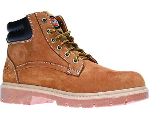 Dickies Donegal Safety Boot, Size 10, Honing, 1