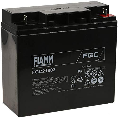 FIAMM Recambio de Batería para Carro de Golf Sillas de Ruedas Autocaravanas...