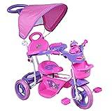 StrMy Triciclo Bambini Trike con Maniglia DIREZIONALE CAPPOTTINA Parasole MODULARE TRASFORMABILE (Rosa)