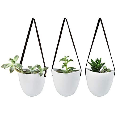 Xihaoer Maceteros colgantes de pared Suculenta 3 Maceteros colgantes para plantas de interior Flor de planta de aire (blanco)