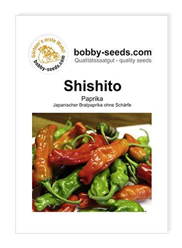 Shishito Bratpaprika von Bobby-Seeds Portion