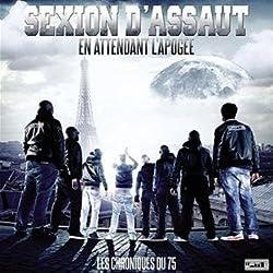 Les Chroniques Du 75, En Attendant L'Apogée (CD + DVD)