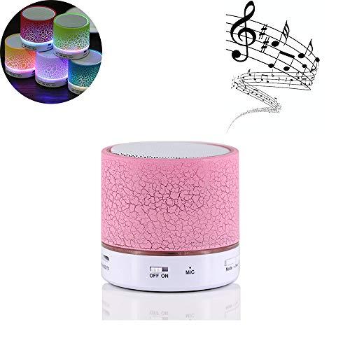 Altavoz Bluetooth Portátil Altavoces,Con Radio FM Micrófono Puerto USB AUX Para iPhone Android Smartphone Tablet PC Ordenador MicroSD U disco y Dispositivos Bluetooth de Audio(Rosa)
