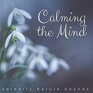 Calming the Mind - Serenity Nature Sounds, Autogenic Training, Instrumental Background Music, Relaxation Techniques