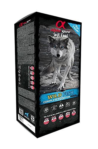 ALPHA 3002209 Spirit Canine Adult Pescado HUMEDO MONODOSIS 9KG, Negro, Mediano, 9000 🔥
