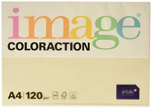 Image Coloraction - farbiges Kopierpapier Dune/Creme 120g/m² A4 - Paket zu 250 Blatt