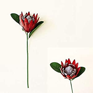 DAOHE Artificial Flower Silk King Protea DIY Flower Arrangement Fake Emperor Flowers White Home Party Wedding Table Decoration(red)