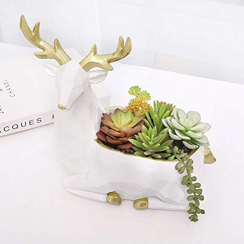 Find Discount Faturt Nordic Succulents Flower Pot Wood Carving Indoor Balcony Decoration Living Room...