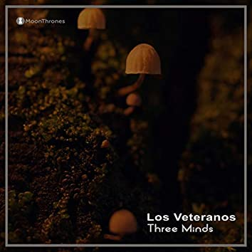 Three Minds