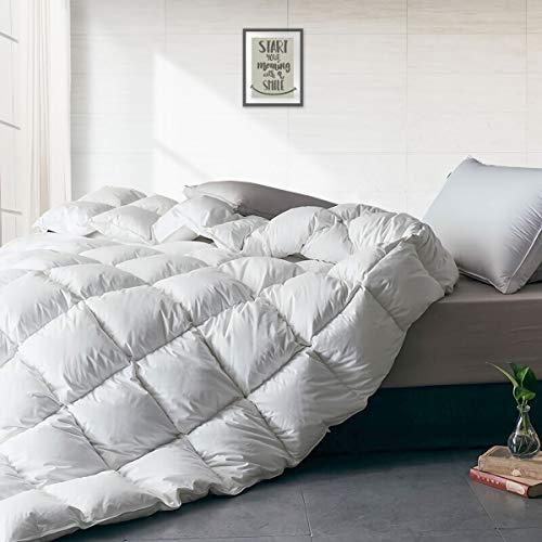 APSMILE Luxurious All Seasons European Goose Down Comforter Full/Queen Size Duvet Insert - Ultra-Soft Egyptian Cotton, 47 Oz 750 Fill Power Fluffy Medium Warmth, Solid White
