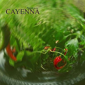 Cayenna 05 - Semi Deus (feat. Adil M.)