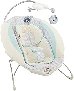 Fisher-Price 费雪 Moonlight Meadow 豪华婴儿弹簧躺椅