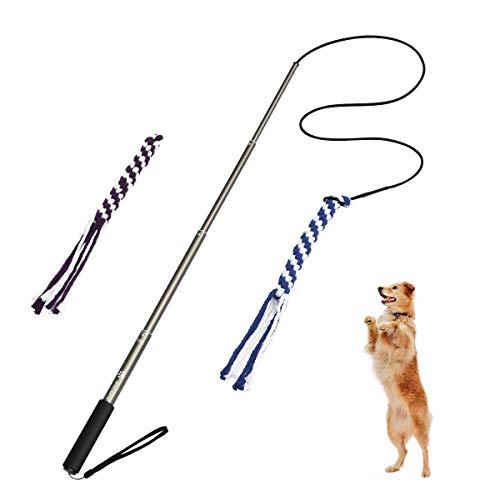 POPETPOP Interaktive Hundespielzeug Hunde Draussen Angel Kauspielzeug mit 2 Seil Hundeangel Pole Haustier Teaser für Training Übung (Größe L)
