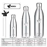 Aorin 500ml Trinkflasche (Silber) - 6