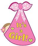 Cute News It's a Girl Baby Door Decoration Sign - Welcome Stork Birth Announcement Hanger - Hospital Newborn Keepsake Wreath - Shower Art - Gender Reveal - Pink