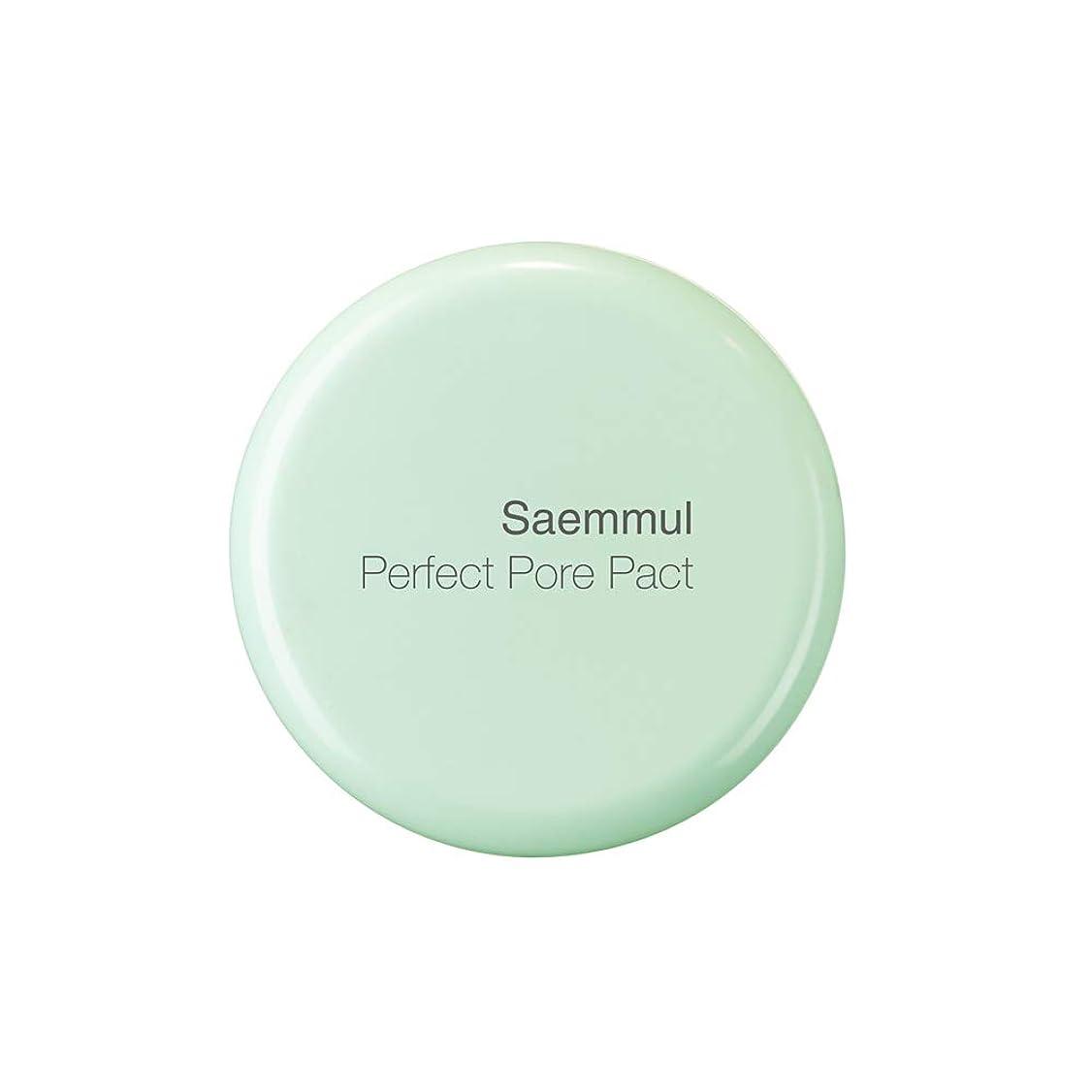 ミルクラック型ザ セム センムル パーフェクトポア パクト 12g 0164
